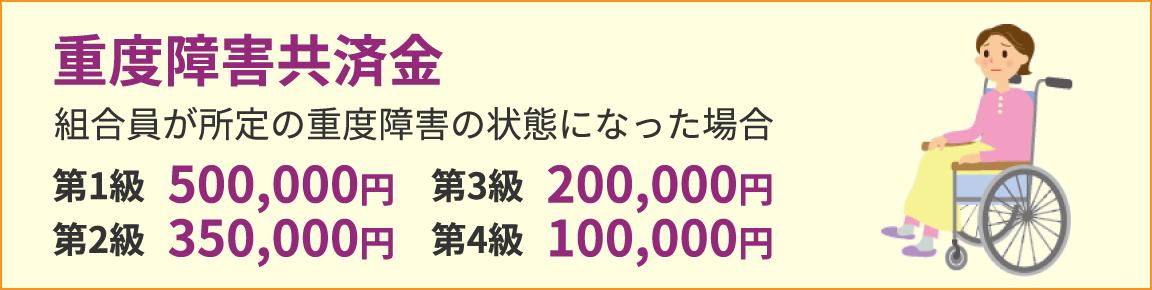 重度障害共済金 組合員が所定の重度障害の状態になった場合 第1級500,000円 第2級350,000円 第3級200,000円 第4級100,000円