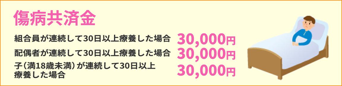 傷病共済金 組合員が連続して30日以上療養した場合30,000円 配偶者が連続して30日以上療養した場合30,000円 子(満18歳未満)が連続して30日以上療養した場合30,000円